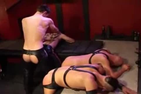 Leather butt slamming And Fisting