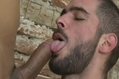 Cody Banx & Viktor Rom Www.blogmaxegatos.co