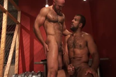 A hairy Hung dark Skinned Bear gets came From A Great Member And booty gangbang Action