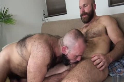 bushy Bear raw With cumshot