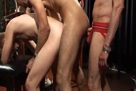 London cum Pigs two