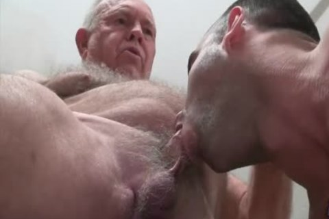 grand-dad Bear bonks A muscular young stud
