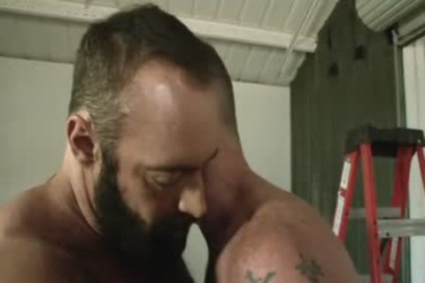 Daddy Scott receives Muscle Bear Brad Kalvo's bulky dick