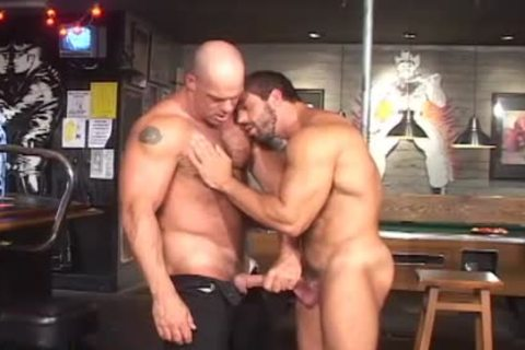 stallions hammering two